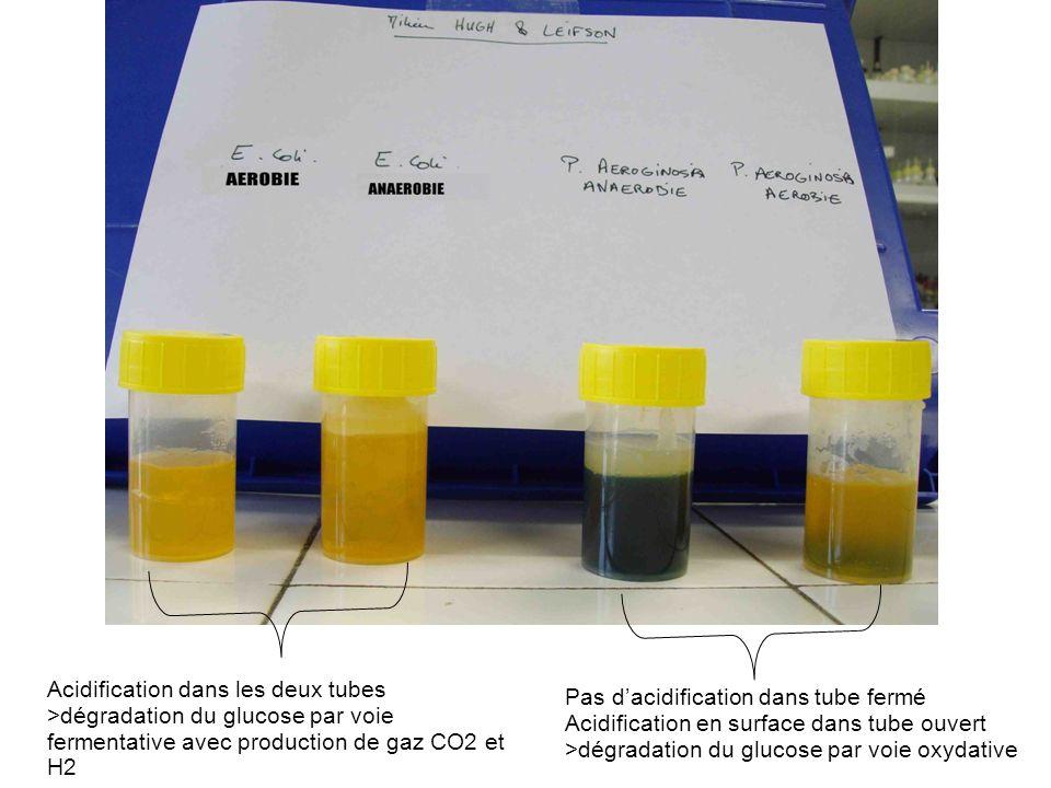 Acidification dans les deux tubes