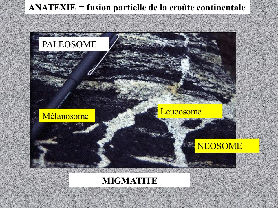 ANATEXIE = fusion partielle de la croûte continentale