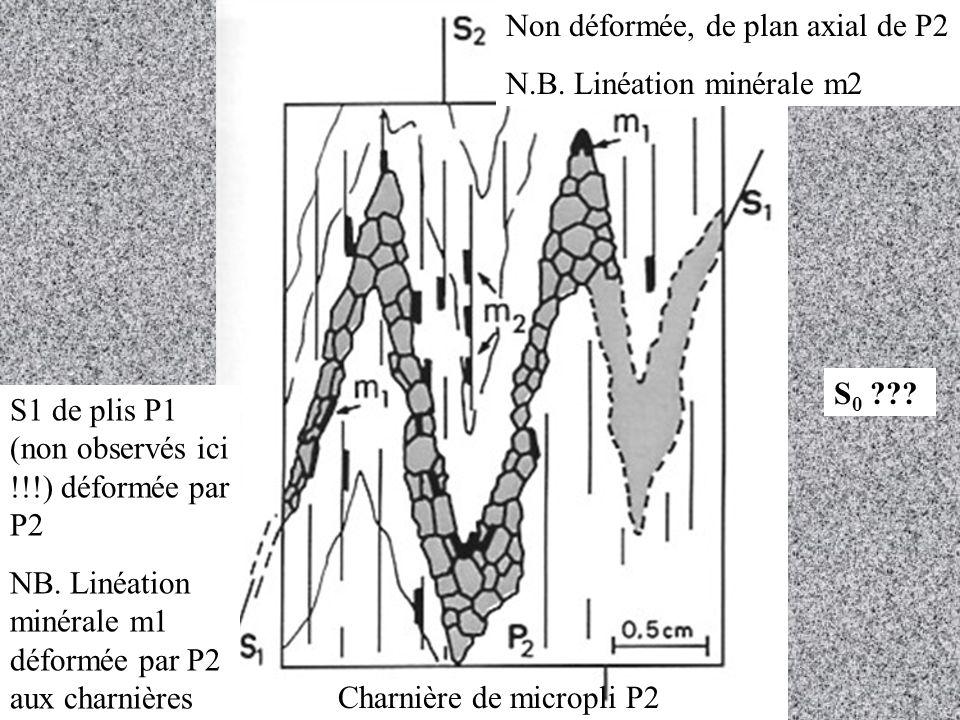 Non déformée, de plan axial de P2