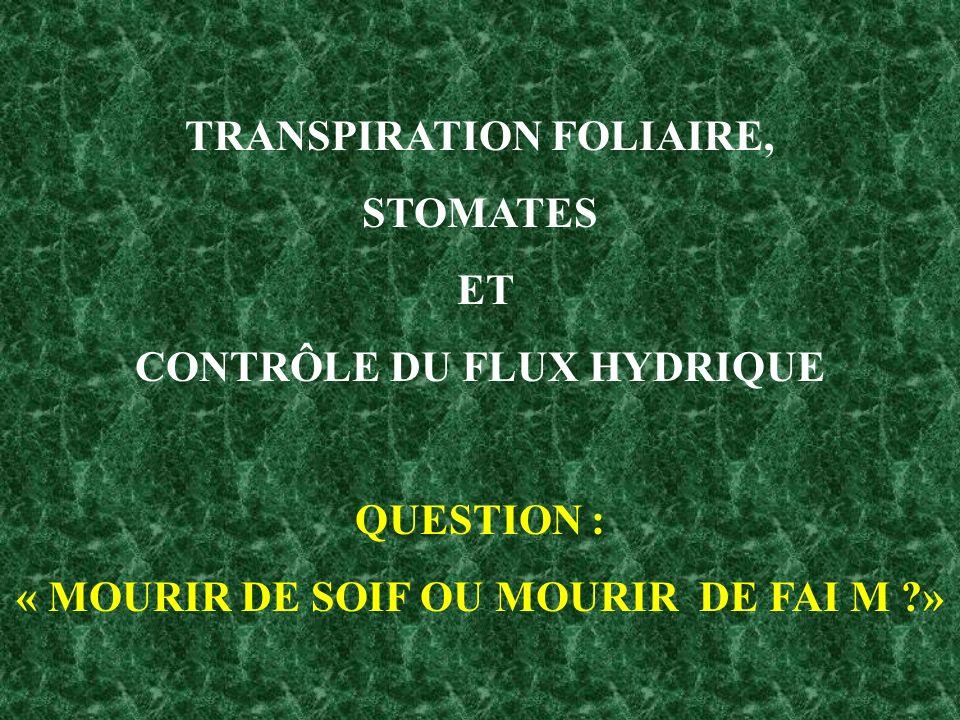 TRANSPIRATION FOLIAIRE, STOMATES ET CONTRÔLE DU FLUX HYDRIQUE