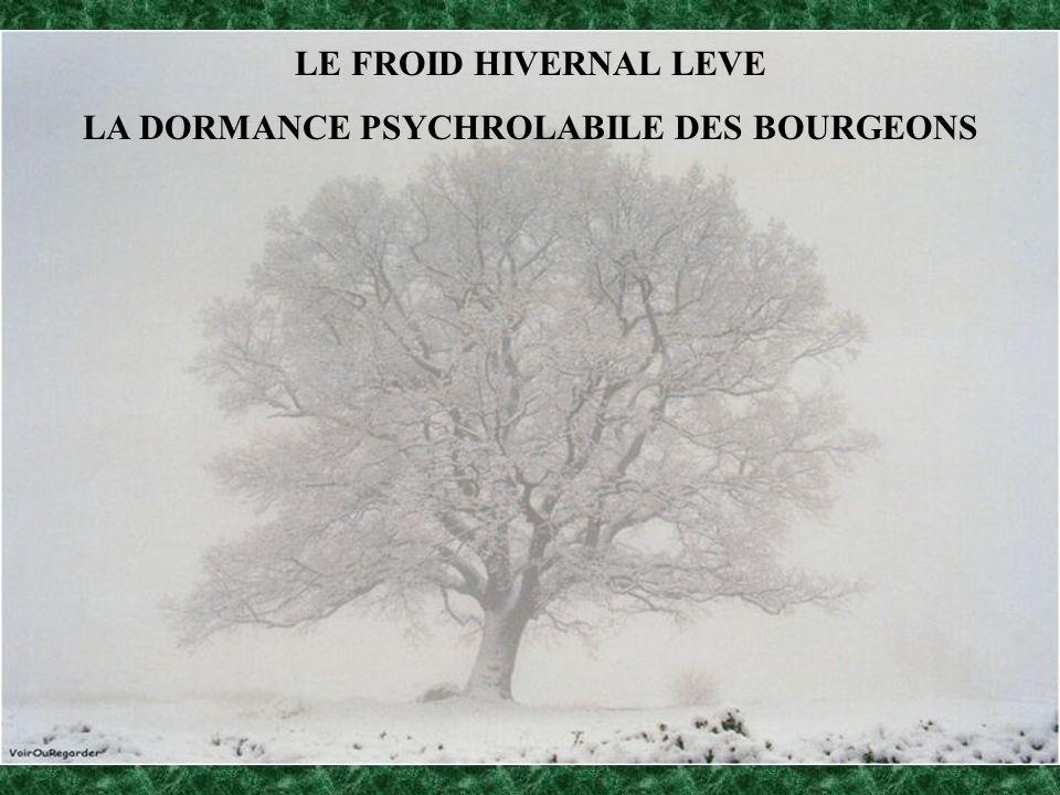 LA DORMANCE PSYCHROLABILE DES BOURGEONS