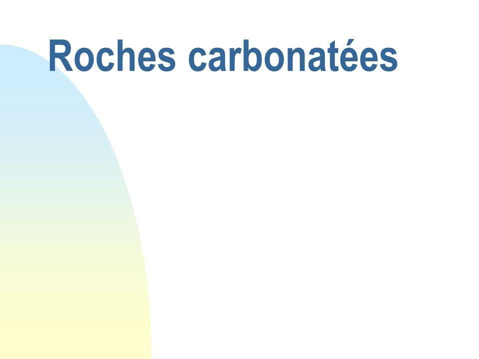 29/05/08 Roches carbonatées