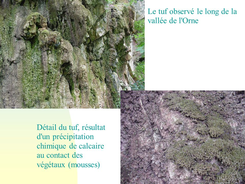 Le tuf observé le long de la vallée de l Orne