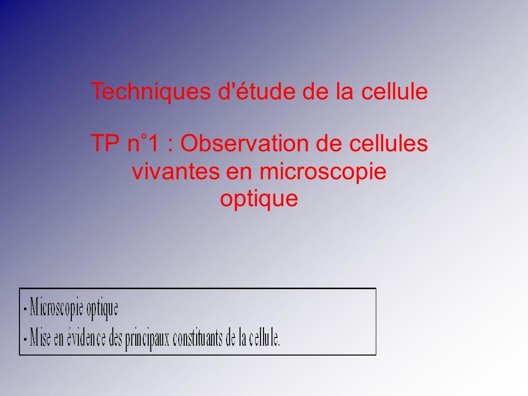 Techniques d étude de la cellule