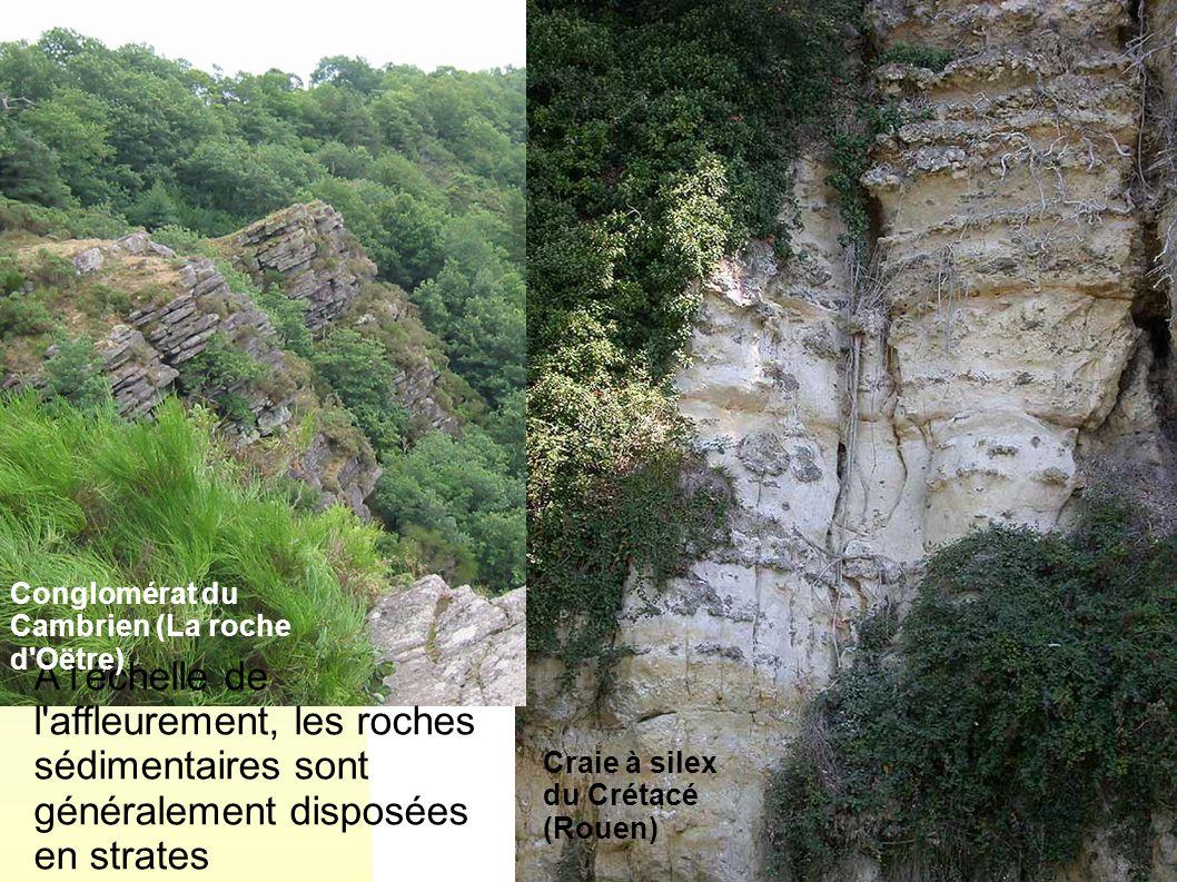 29/05/08 Conglomérat du Cambrien (La roche d Oëtre) A l échelle de l affleurement, les roches sédimentaires sont généralement disposées en strates.
