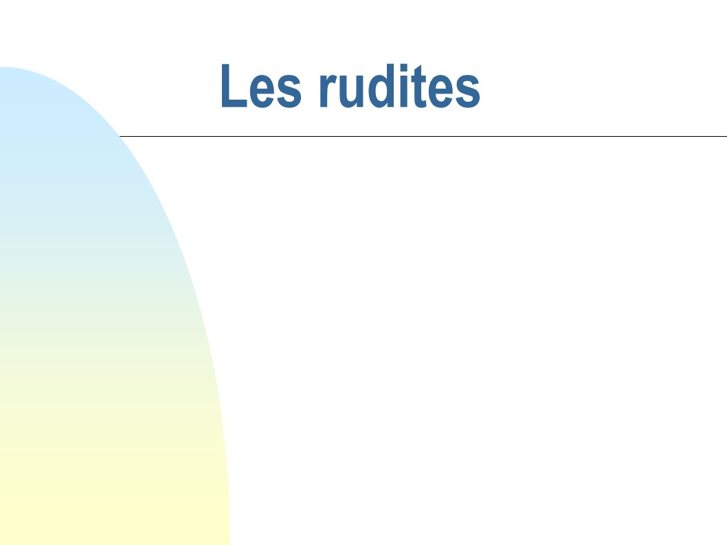 29/05/08 Les rudites