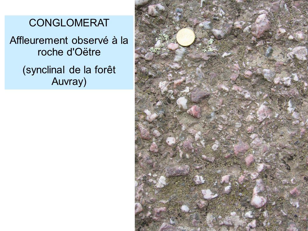 Affleurement observé à la roche d Oëtre (synclinal de la forêt Auvray)