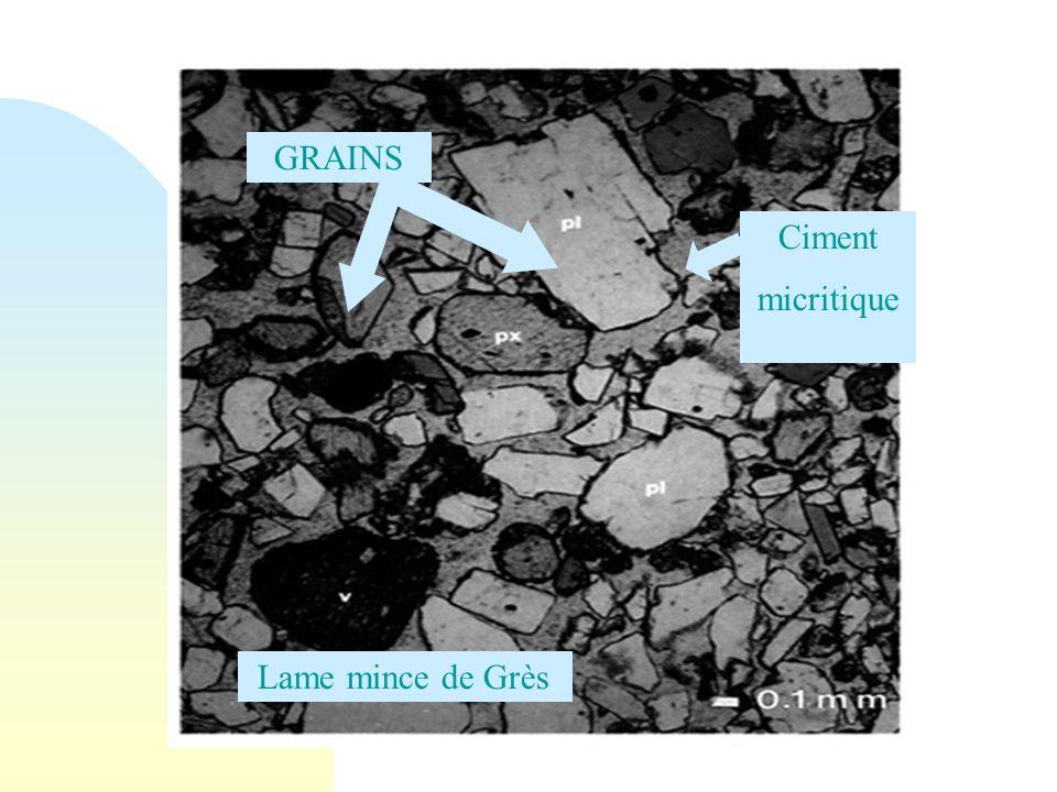 29/05/08 GRAINS Ciment micritique Lame mince de Grès