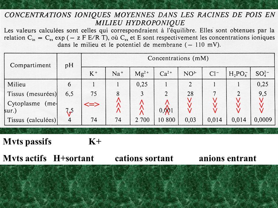 <=>>>> >>> >>> >>> >>> >>> >>> > Mvts passifs K+ Mvts actifs H+sortant cations sortant anions entrant.