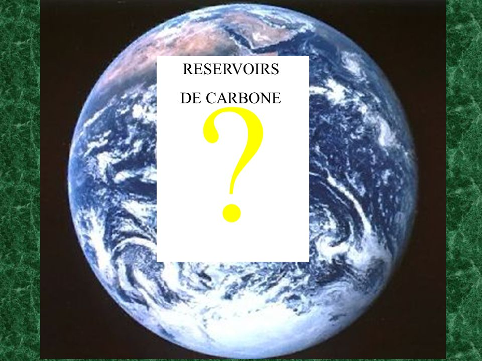 RESERVOIRS DE CARBONE