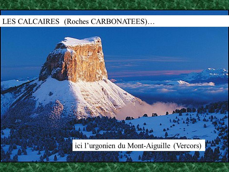 LES CALCAIRES (Roches CARBONATEES)…