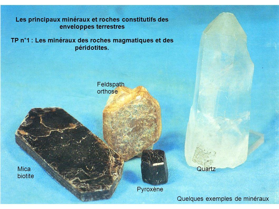TP n°1 : Les minéraux des roches magmatiques et des péridotites.