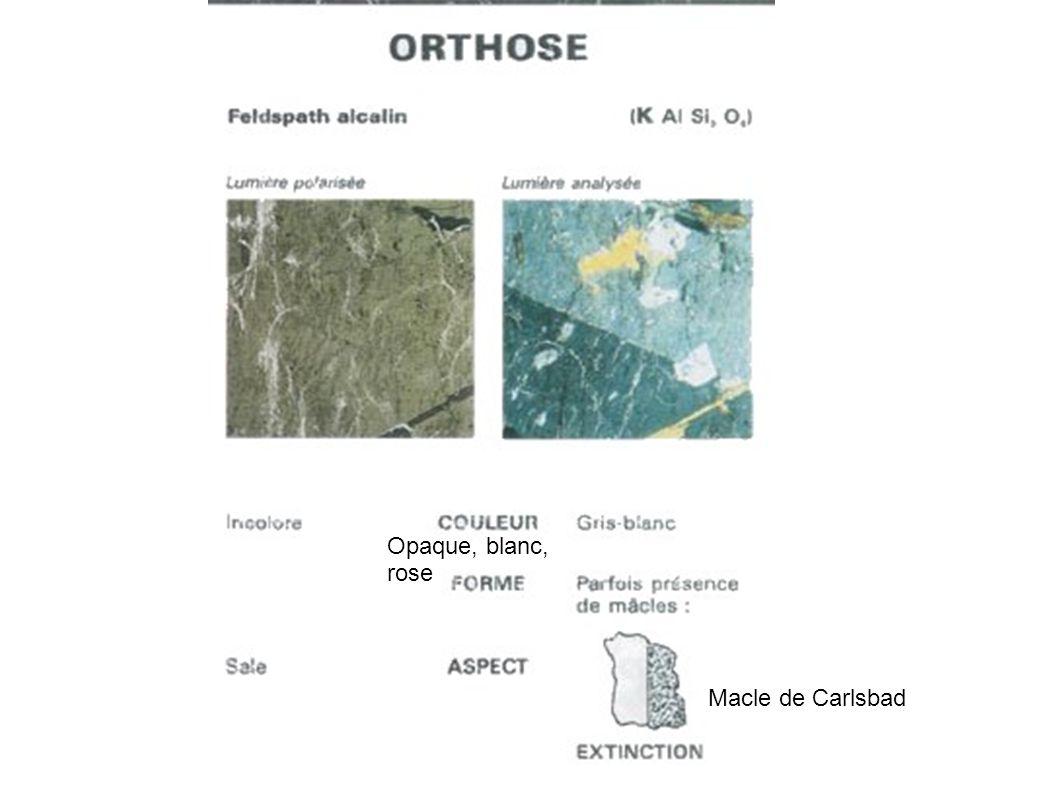 Opaque, blanc, rose Macle de Carlsbad