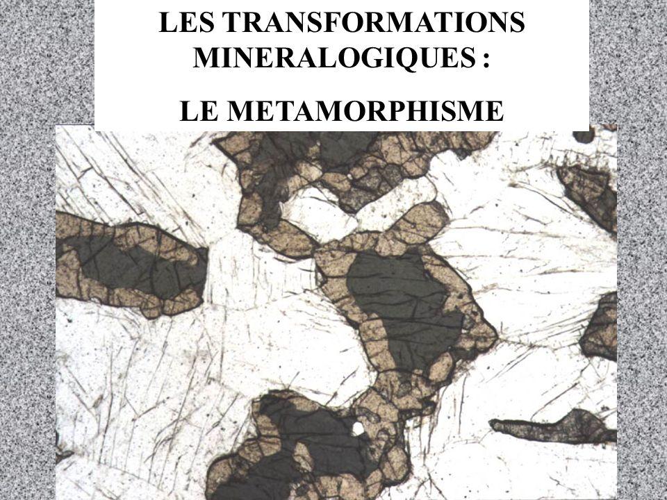 LES TRANSFORMATIONS MINERALOGIQUES :
