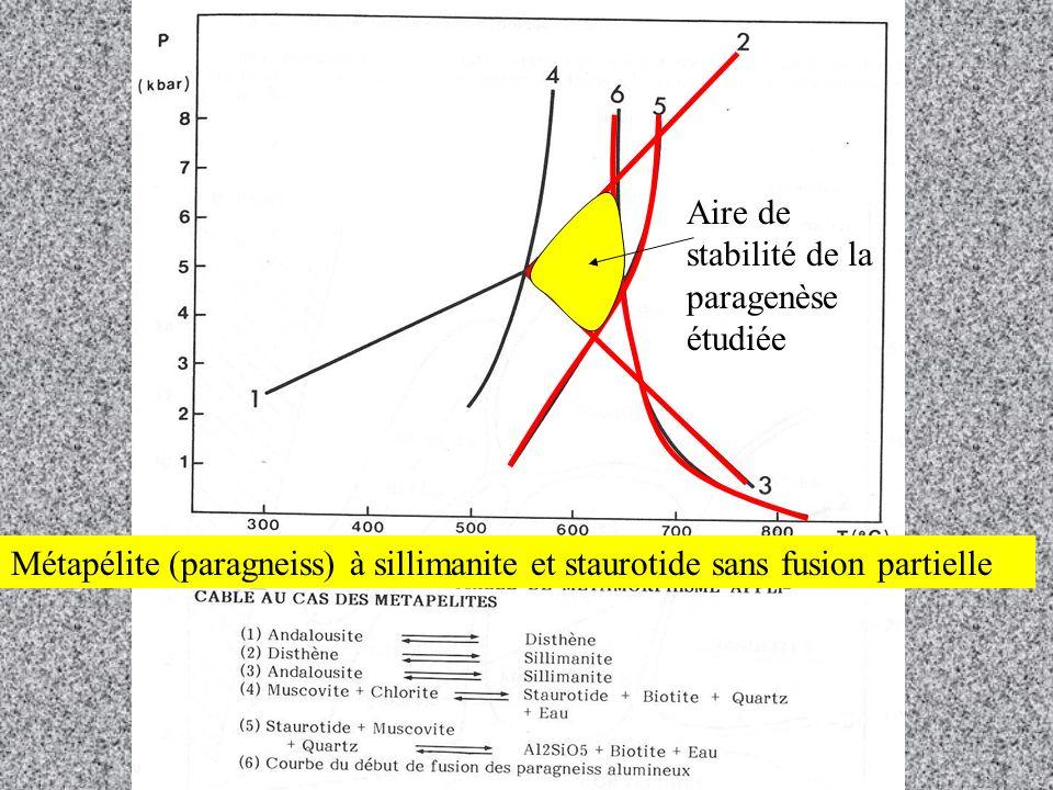 Aire de stabilité de la paragenèse étudiée