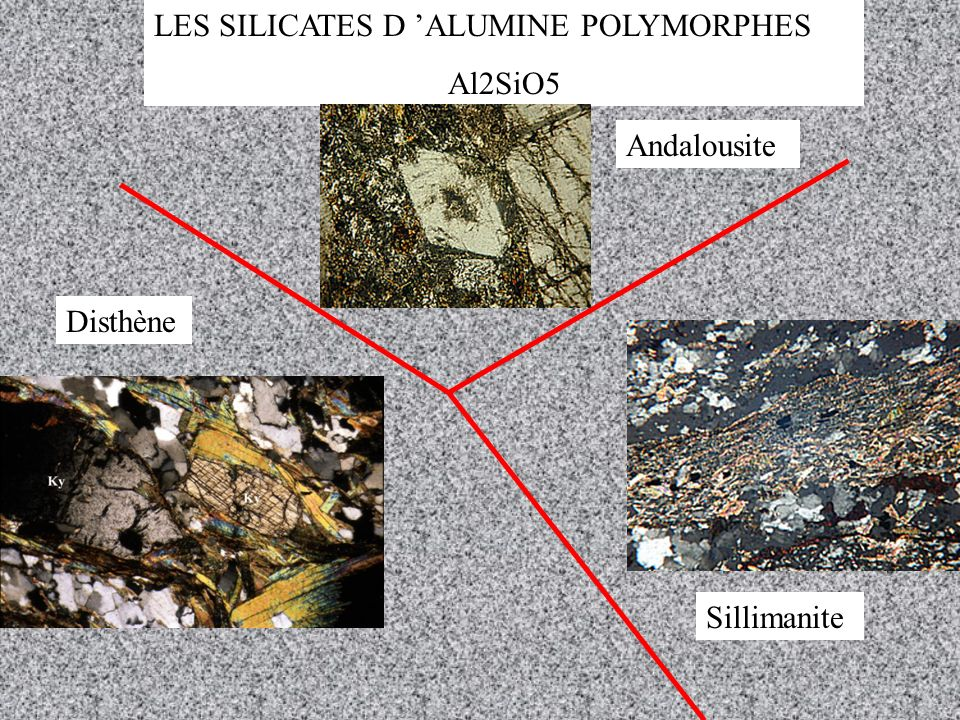 LES SILICATES D 'ALUMINE POLYMORPHES