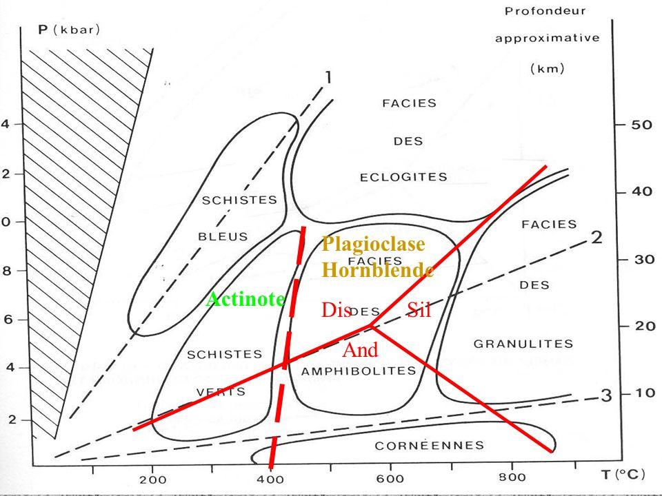PlagioclaseHornblende