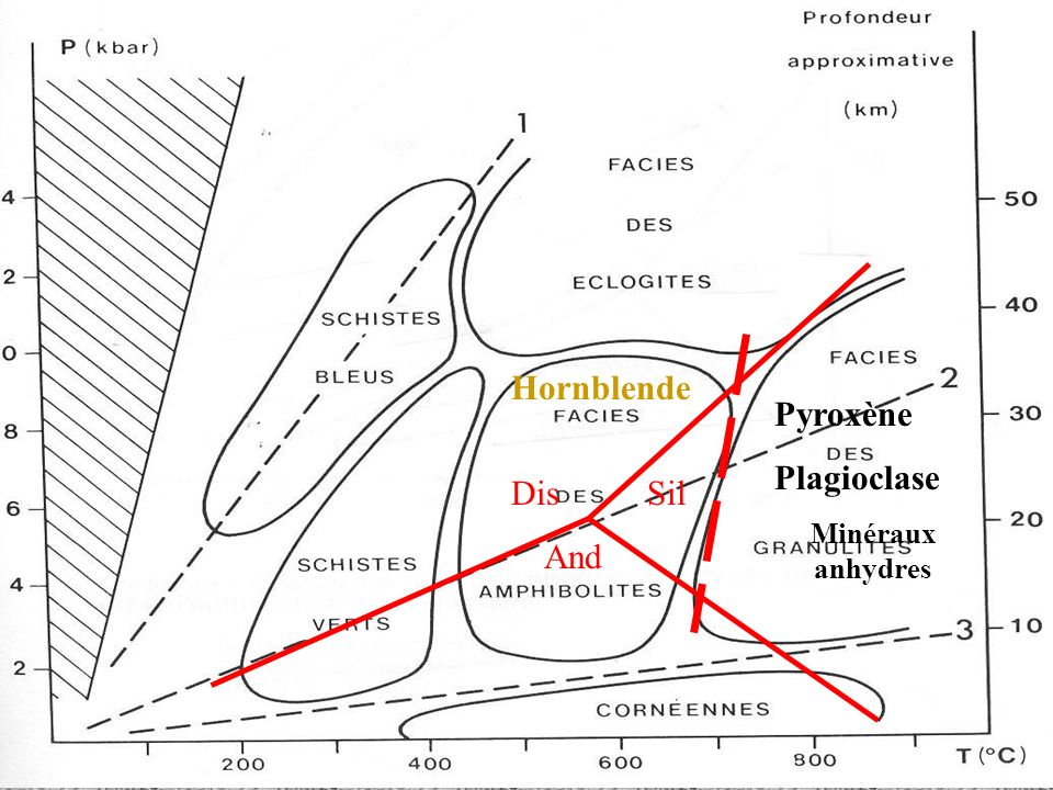 Hornblende Pyroxène Plagioclase Minéraux anhydres Dis Sil And