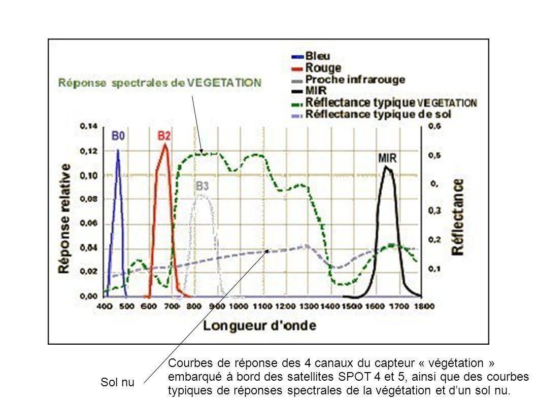 Courbes de réponse des 4 canaux du capteur « végétation » embarqué à bord des satellites SPOT 4 et 5, ainsi que des courbes typiques de réponses spectrales de la végétation et d'un sol nu.