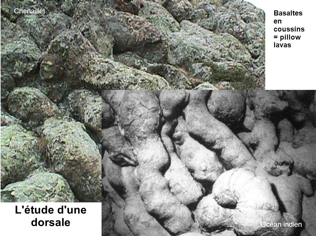 L étude d une dorsale Chenaillet Basaltes en coussins = pillow lavas
