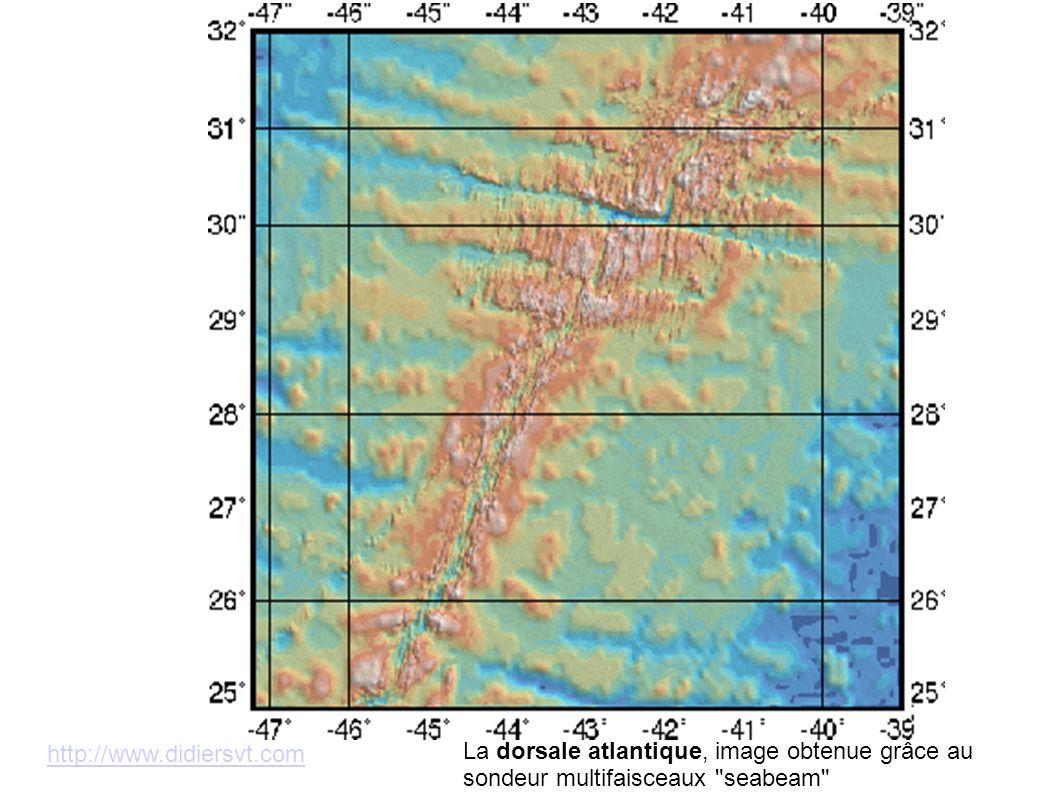 http://www.didiersvt.com La dorsale atlantique, image obtenue grâce au sondeur multifaisceaux seabeam