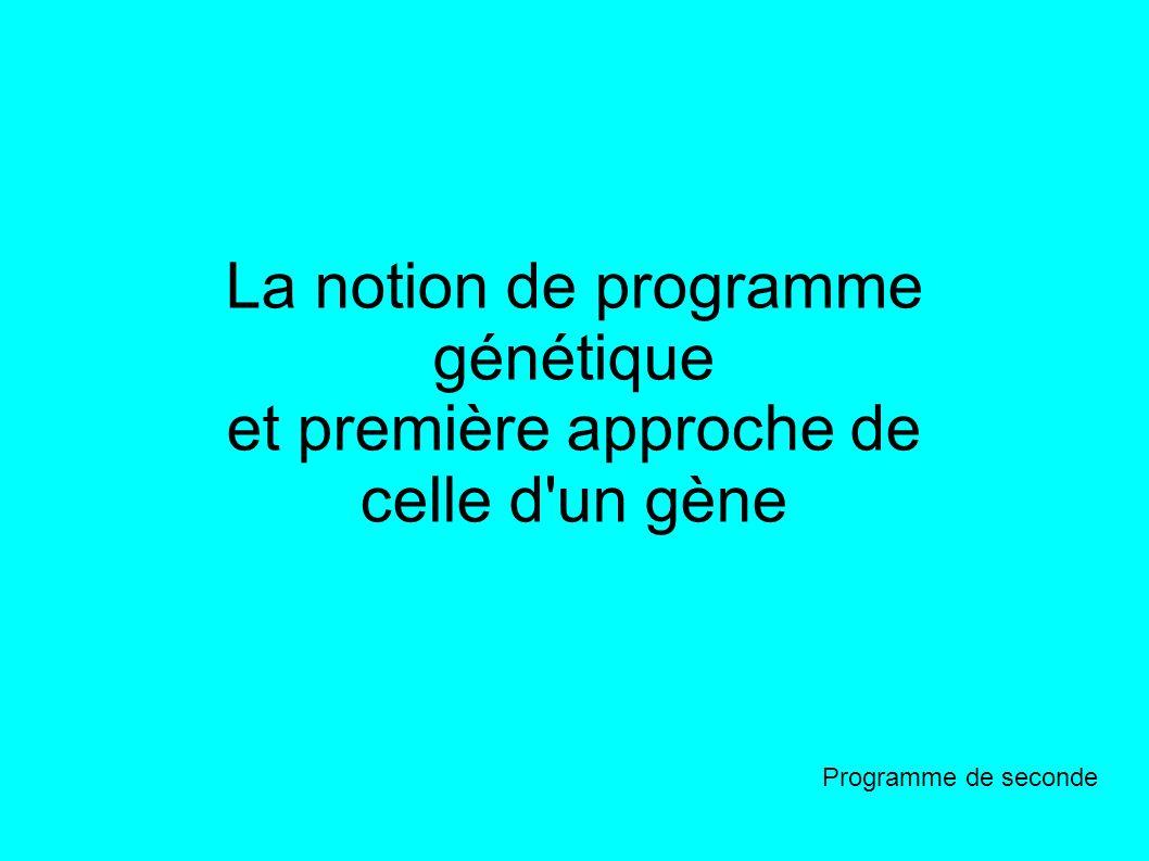 La notion de programme génétique