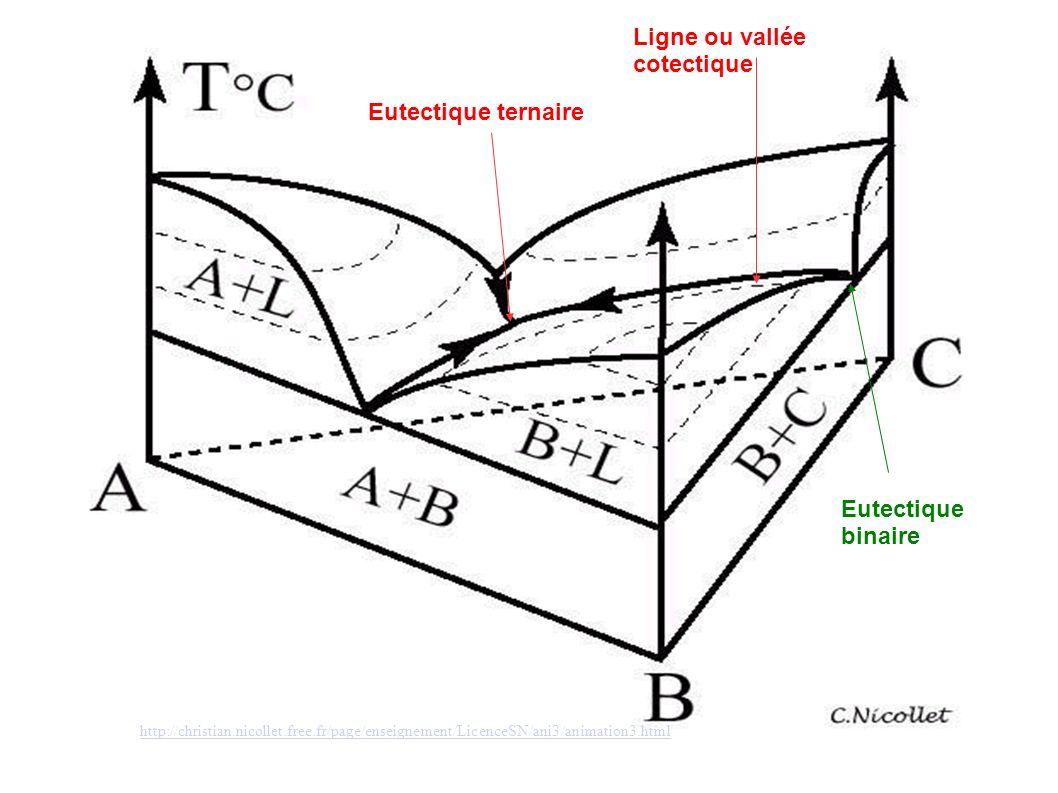 Ligne ou vallée cotectique