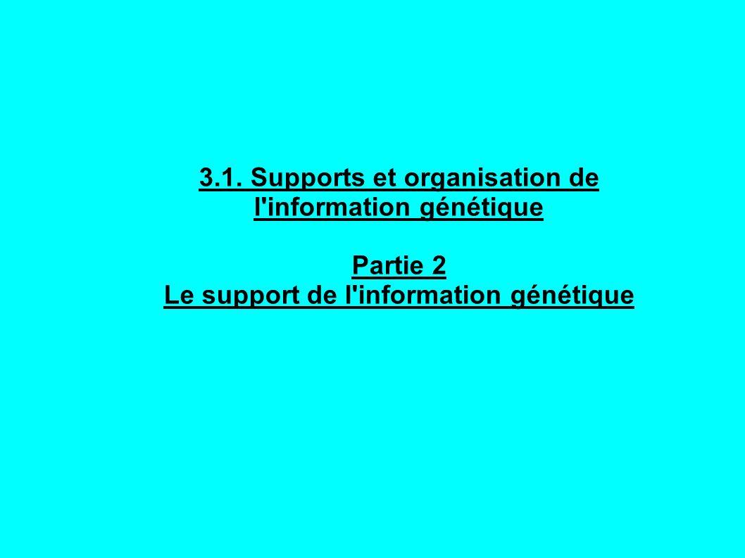 3.1. Supports et organisation de l information génétique
