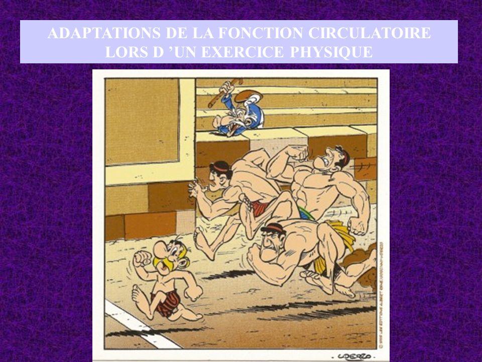 ADAPTATIONS DE LA FONCTION CIRCULATOIRE LORS D 'UN EXERCICE PHYSIQUE
