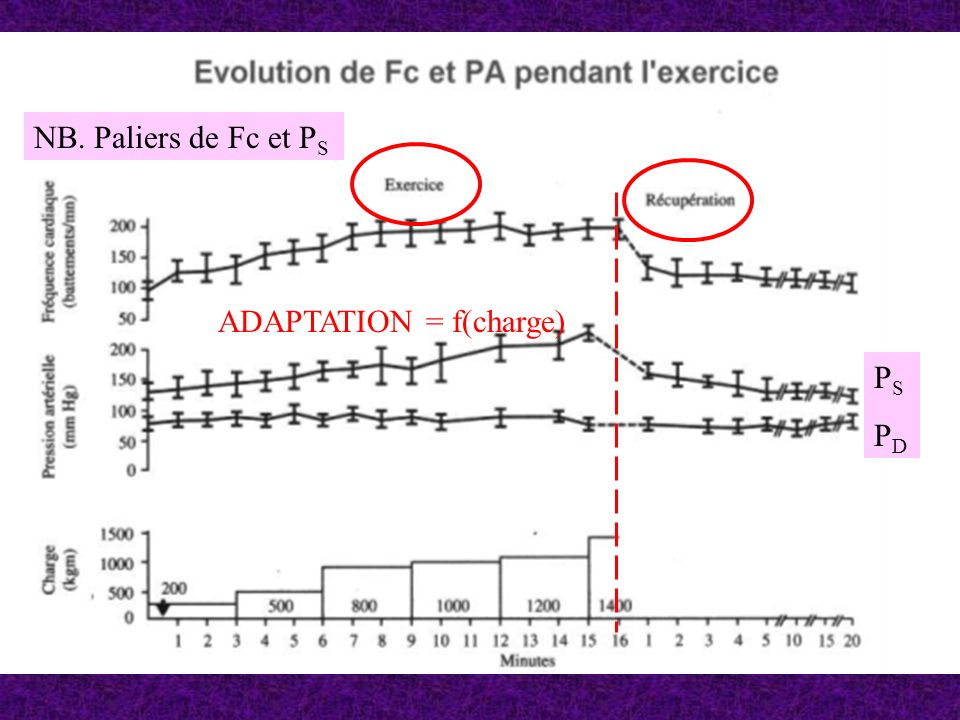 NB. Paliers de Fc et PS ADAPTATION = f(charge) PS PD