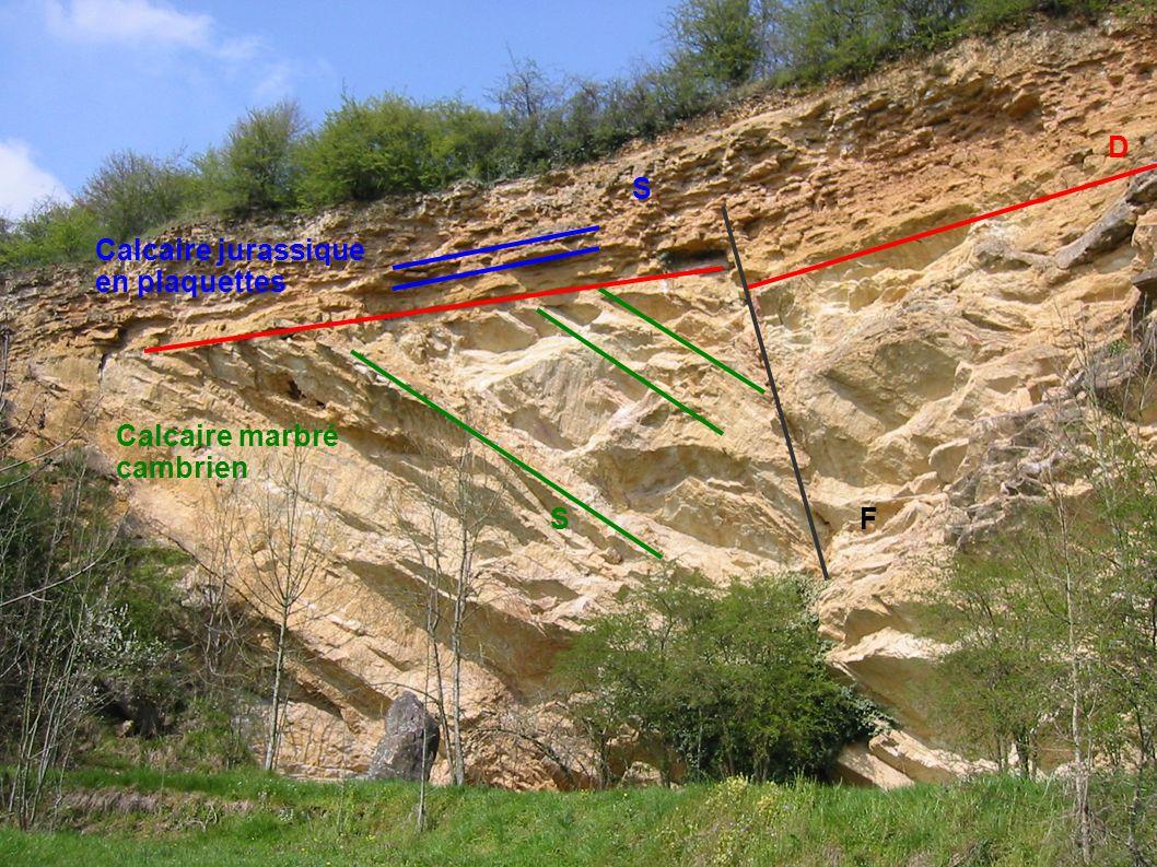 D S Calcaire jurassique en plaquettes Calcaire marbré cambrien S F
