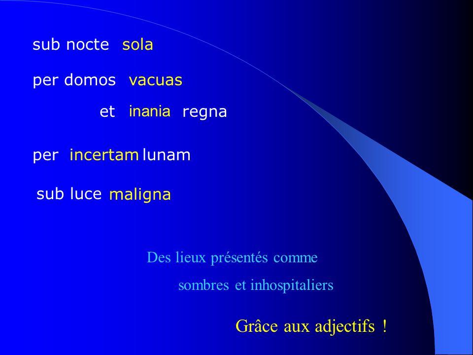 Grâce aux adjectifs ! sub nocte sola per domos vacuas et regna inania