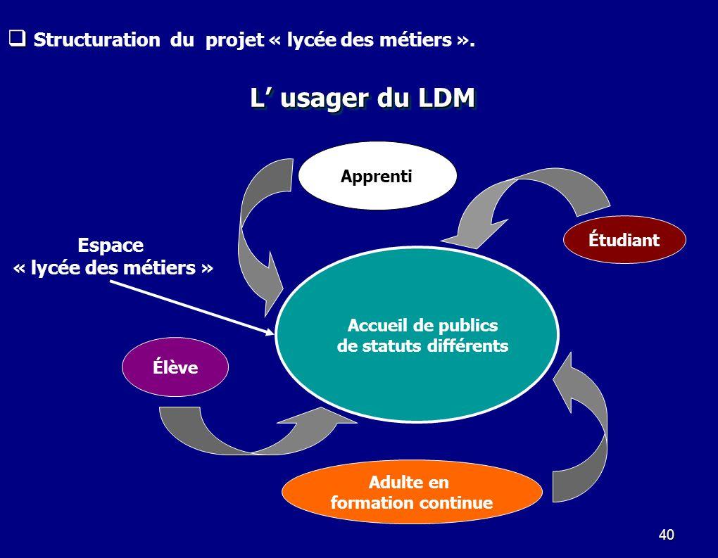 L' usager du LDM Structuration du projet « lycée des métiers ». Espace