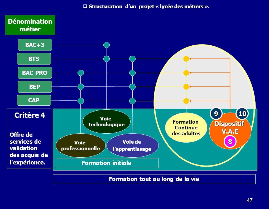 Critère 4 Dénomination métier 9 10 Dispositif V.A.E 8 BAC+3 BTS