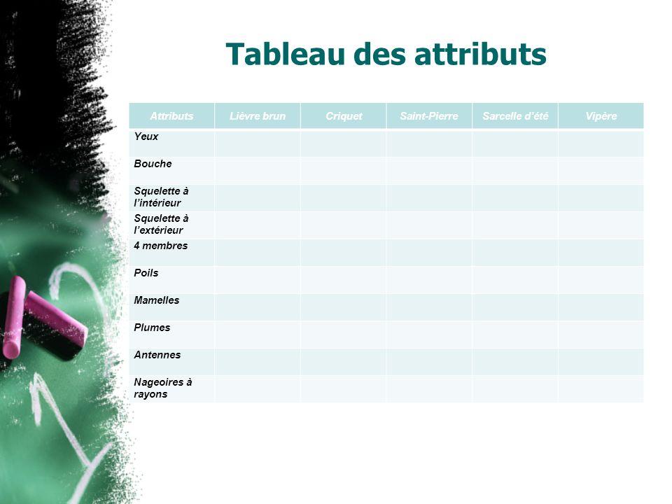 Tableau des attributs Attributs. Lièvre brun. Criquet. Saint-Pierre. Sarcelle d'été. Vipère. Yeux.