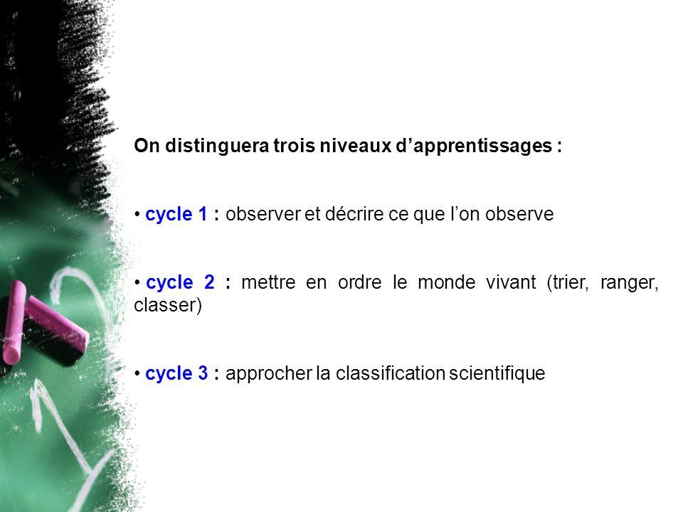 On distinguera trois niveaux d'apprentissages :