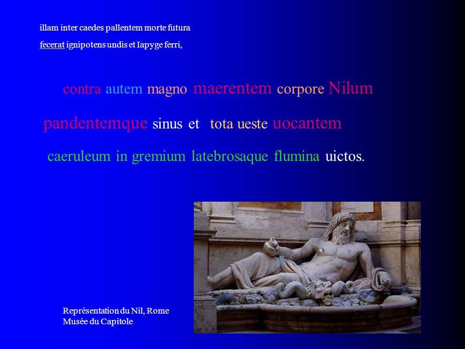pandentemque sinus et contra autem magno maerentem corpore Nilum