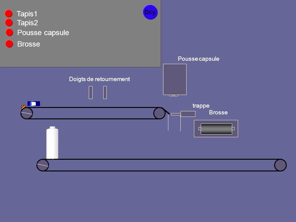 Tapis1 Tapis2 Pousse capsule Brosse Dcy Pousse capsule