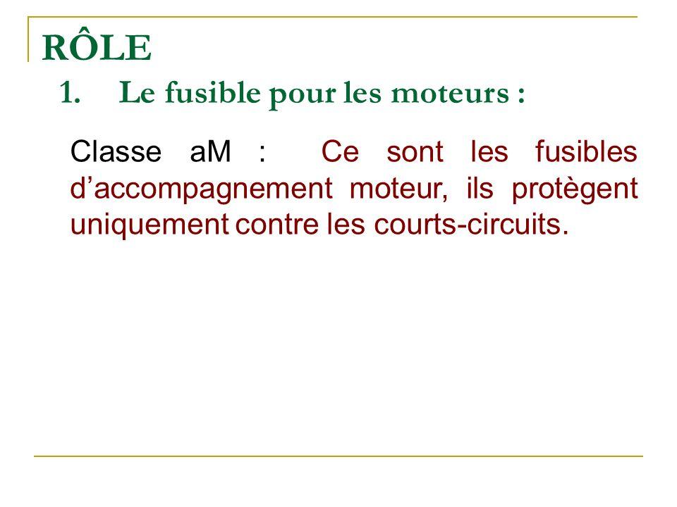 RÔLE Le fusible pour les moteurs :
