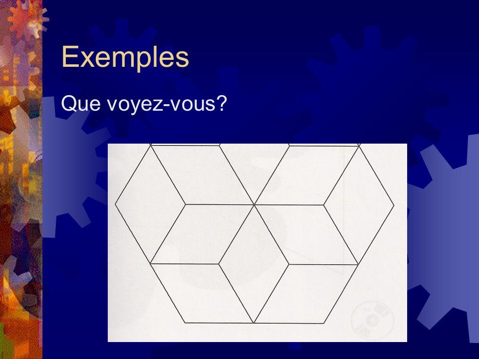Exemples Que voyez-vous