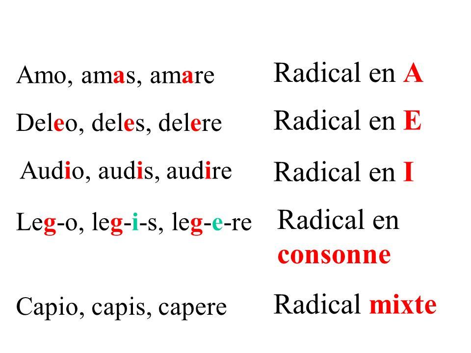 Radical en A Radical en E Radical en I Radical en consonne