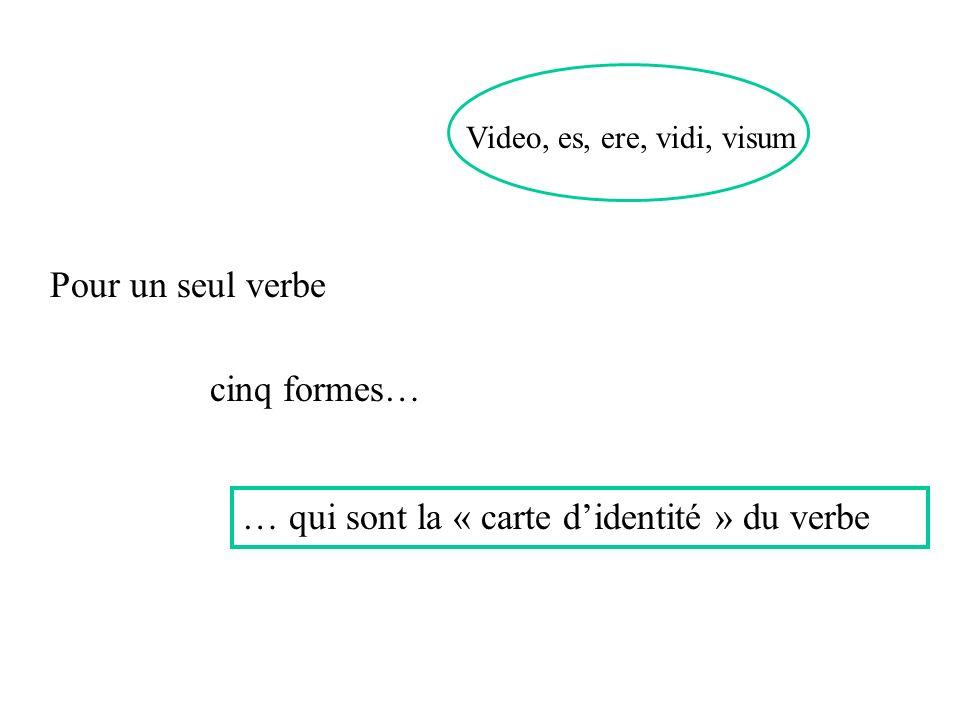 … qui sont la « carte d'identité » du verbe