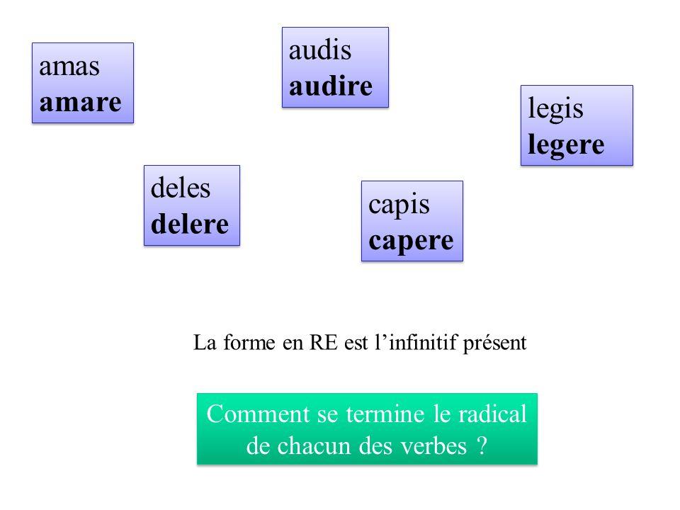 Comment se termine le radical de chacun des verbes