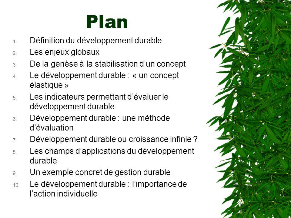 Plan Définition du développement durable Les enjeux globaux