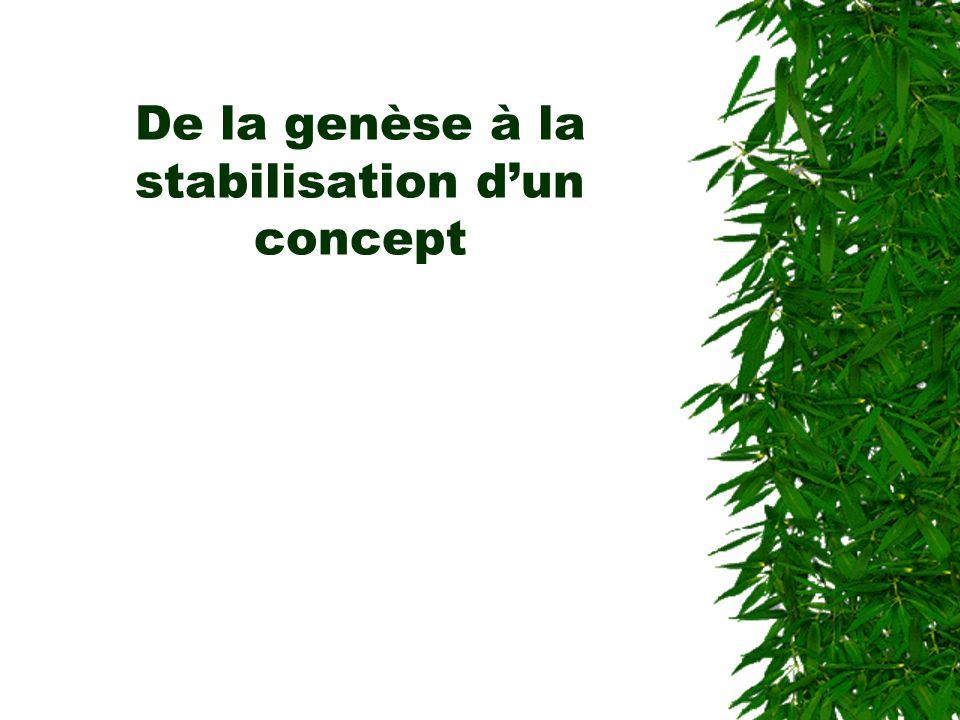 De la genèse à la stabilisation d'un concept