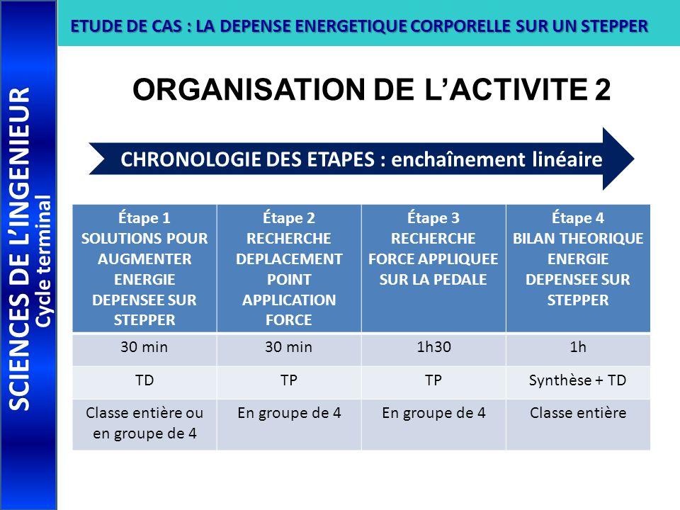 ORGANISATION DE L'ACTIVITE 2