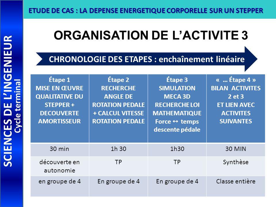 ORGANISATION DE L'ACTIVITE 3