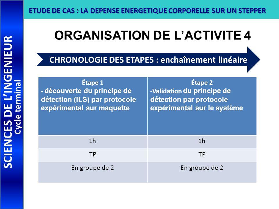 ORGANISATION DE L'ACTIVITE 4