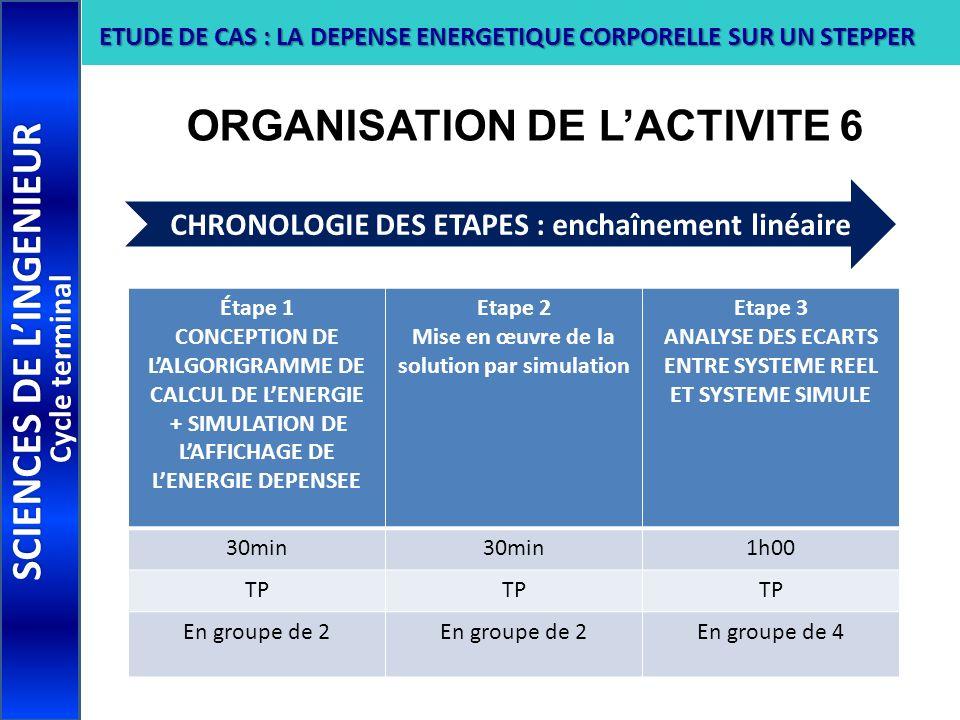 ORGANISATION DE L'ACTIVITE 6