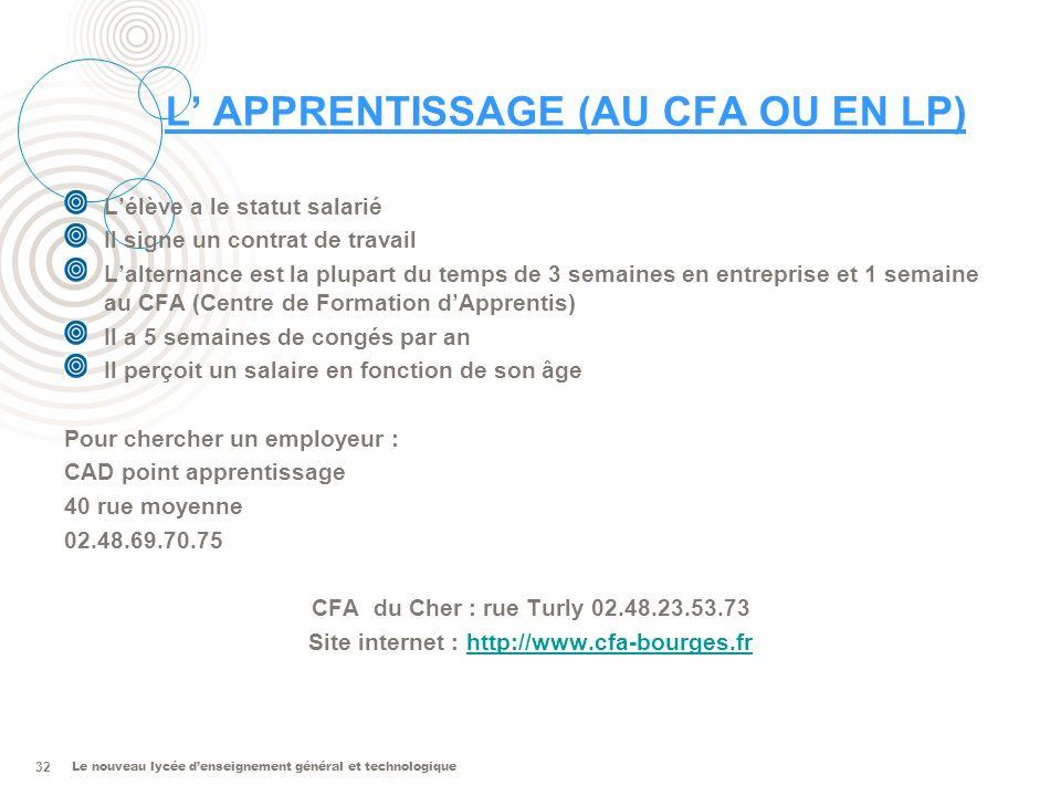 L' APPRENTISSAGE (AU CFA OU EN LP)